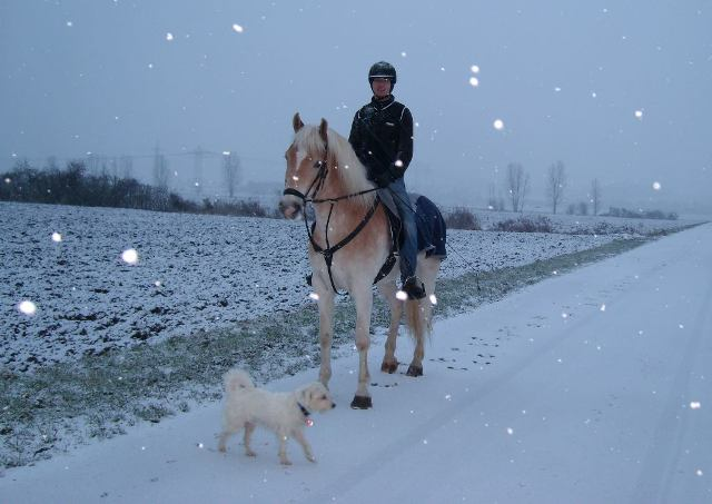 Riding with Andor in the snow